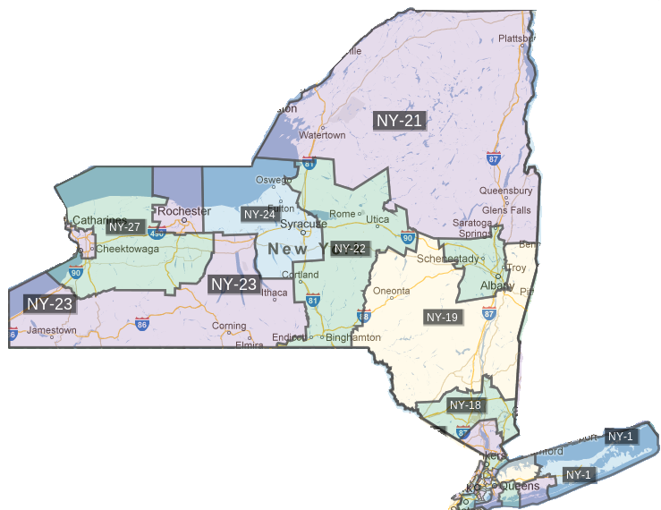 New York Voting Districts