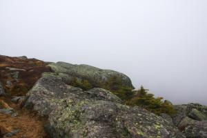 algonquin-summit