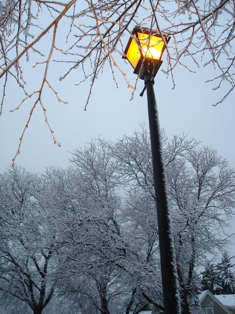 Street Light in Fairport