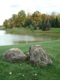 Fall Foliage at MCC Pond