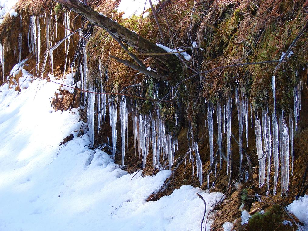 Ice Formation on North Side of the Hill