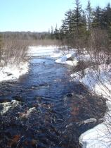 North Branch of The Grass River